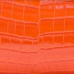 Crocodile Shiny Tangerine