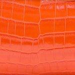 Crocodile Shiny Tangerine