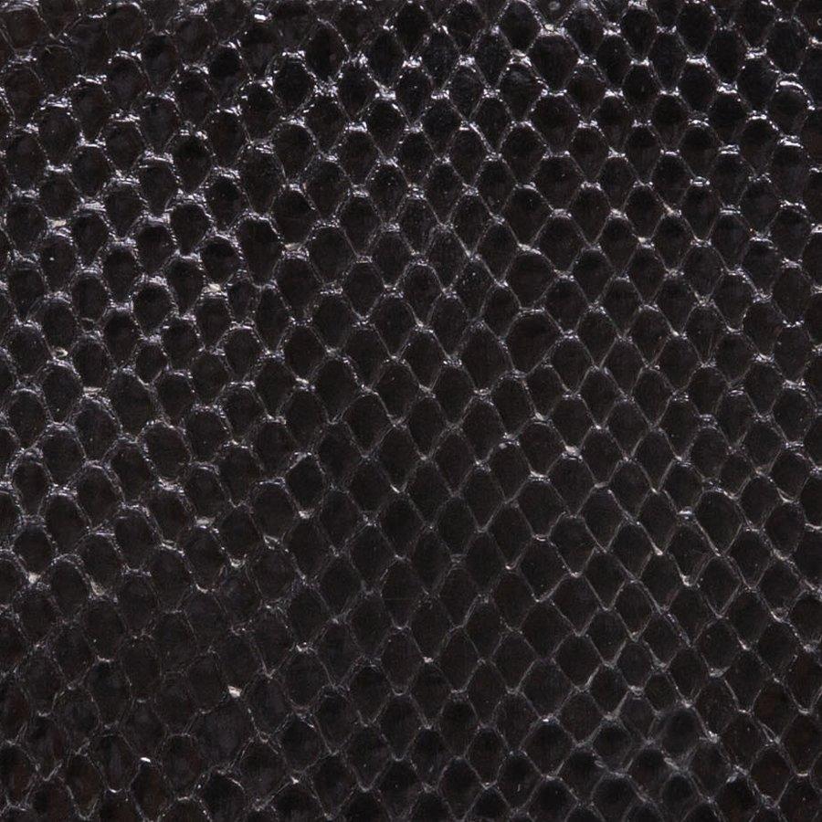 Python Shiny Black