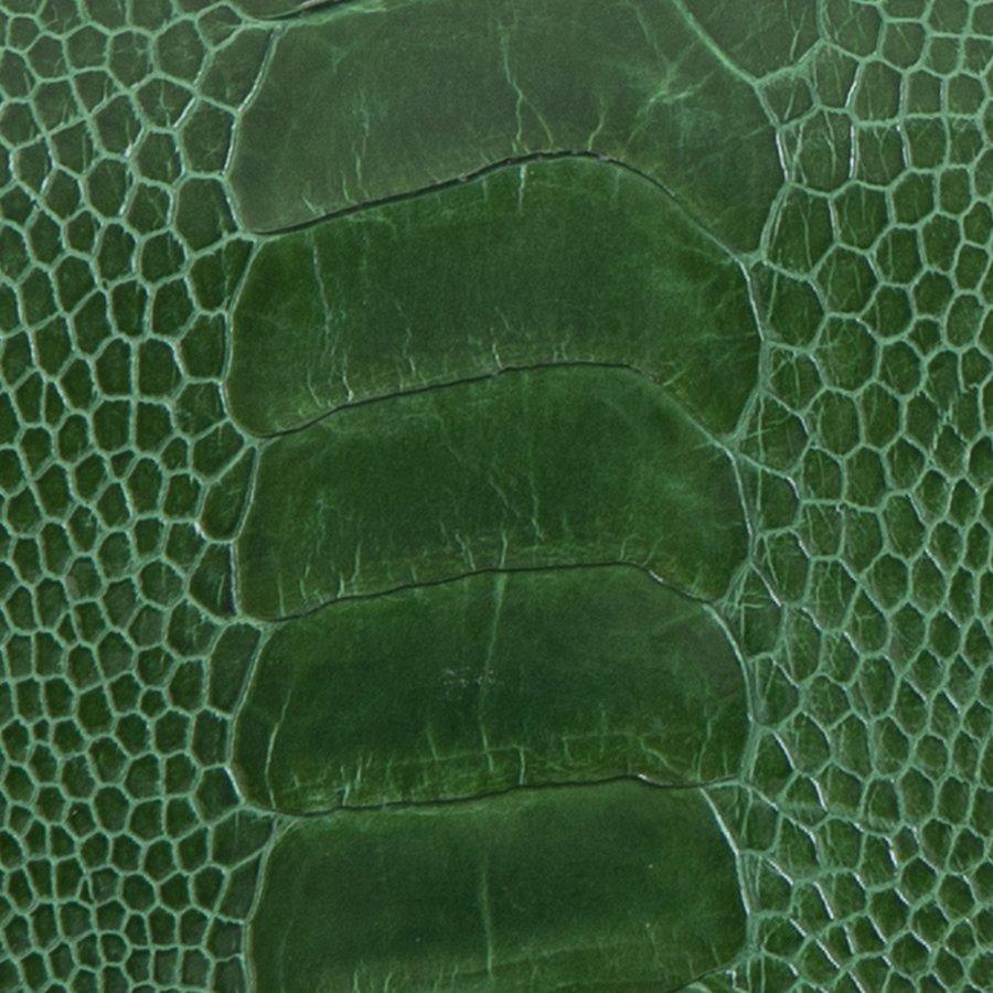 Ostrich Leg Green