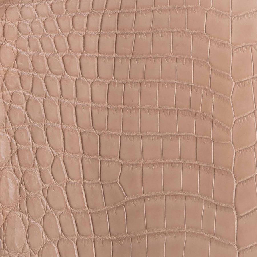 Walnut Crocodile