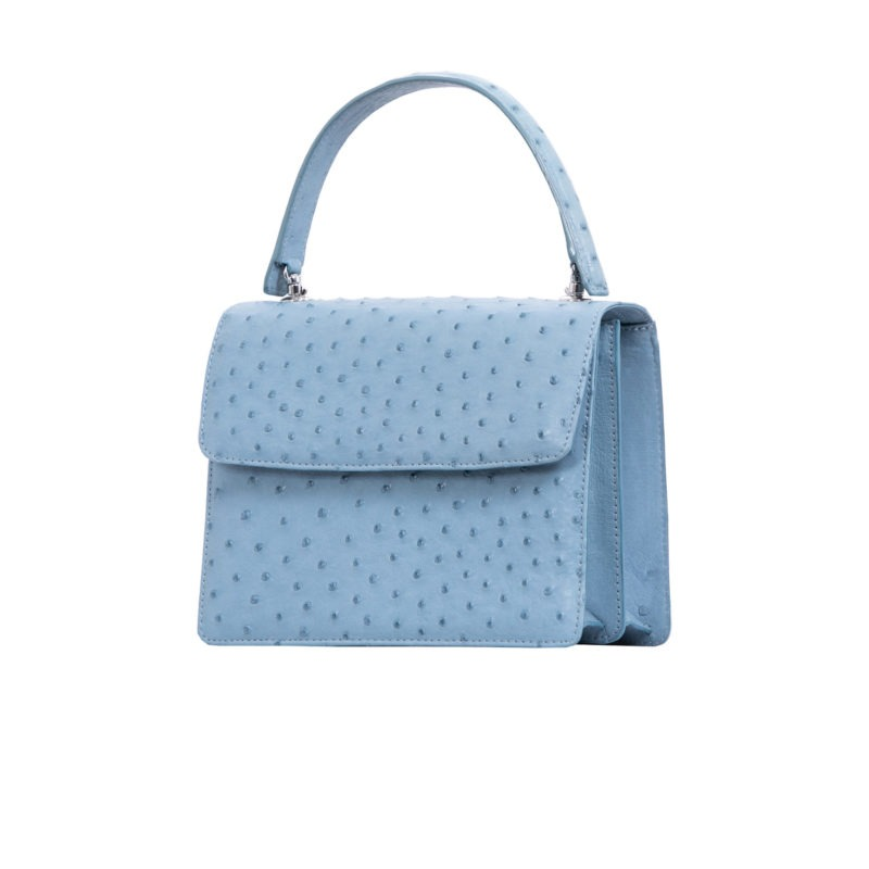 Maxi in Blue Jay Ostrich 2