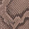 Python Nutmeg Canvas