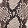 Python Nutmeg Shiny